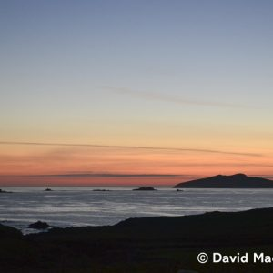 David MacKenzie | An Fear Marbh, Blasket Islands