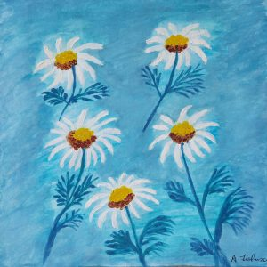 Ann Johnson – Daisies