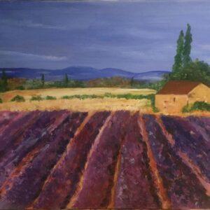 Ann Matthews – Lavender Field