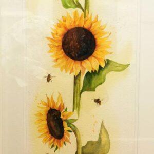 13. Nóirín Dodd – Sunflowers